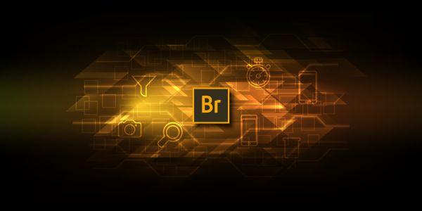 Adobe Bridge CC Digital Asset Management Simplifies Creative Process http://www.thedigitalbridges.com/download-adobe-bridge-cc-free/ #Digital #Bridge