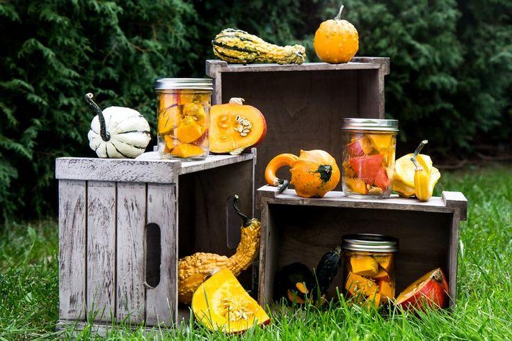 Ozdoba ogrodu, ale również sposób na zaprawianie warzyw i owoców, którymi możemy obdarować najbliższych