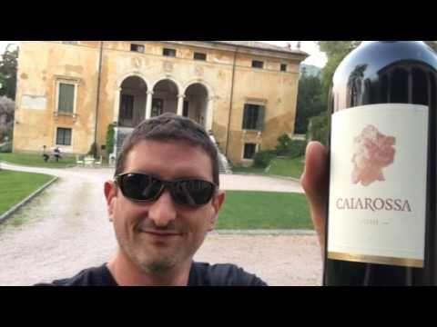 Vinitaly 2017 Encounter & Wine Tasting: Cantina Tramin, Alto Adige - Social Vignerons
