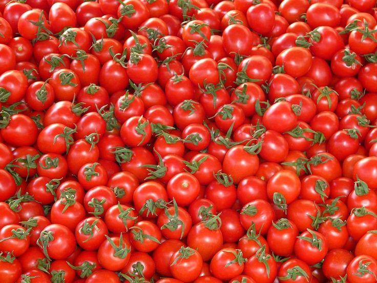 Pourquoi il faut éviter de conserver ses tomates dans le frigidaire