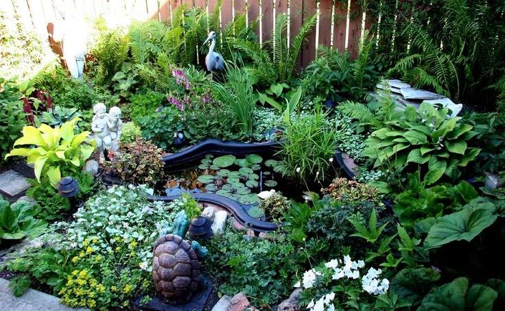 1000 ideas about plastic pond on pinterest plastic pond for Plastic pond ideas