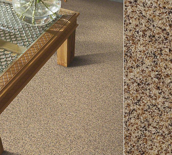 Explore Shaw Floors Carpet In The Latest Colors Patterns And Trends Order Samples That Reflect Your Design Vision
