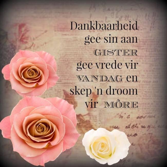 Dankbaarheid gee sin aan gister gee vrede vir vandag en skep 'n droom vir more.