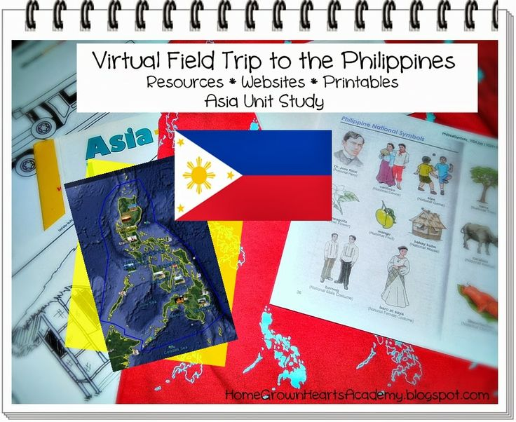 philippines country analysis Country analysis involves the examination and interpretation of a nation's economic, social and political environment the analysis offers a comprehensive overview.