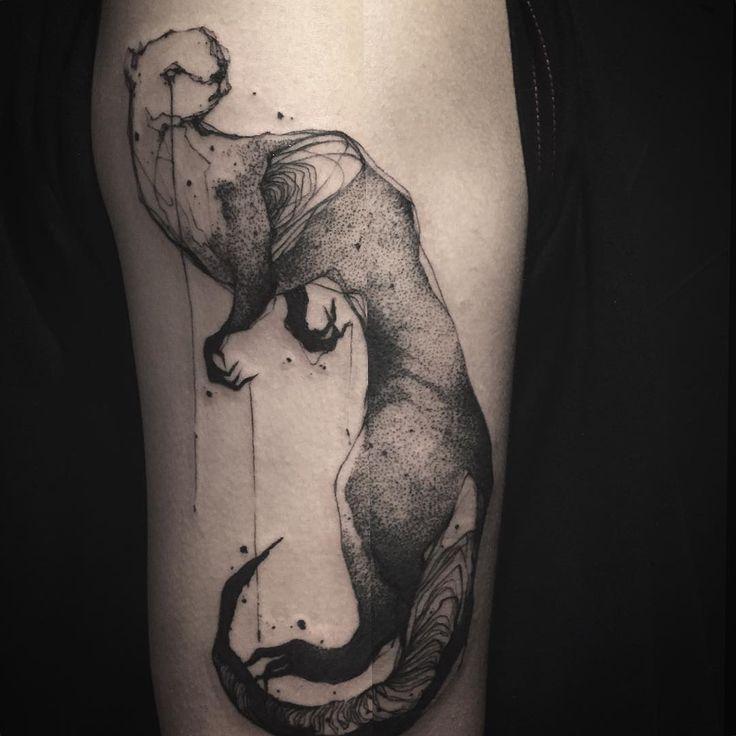 ... about Ferret Tattoo on Pinterest   Ferrets Pet ferret and Daisy dooks