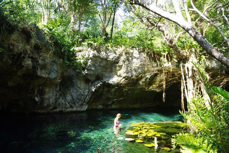 グラン・セノーテ(Gran Cenote)   極上の透明度に差し込む光のカーテン