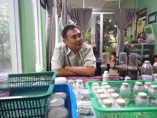 Kedatangan tamu Pak Wijaya yang mengkulturkan kelapa pandan wangi  #eshaflora #kulturjaringan #planttissueculture #tissueculture #skalarumahtangga #bogor #kultur #kuljar