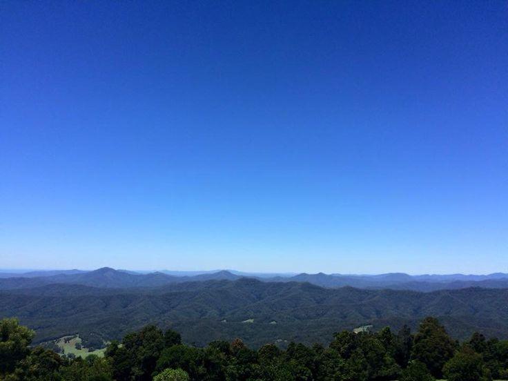 North of NSW Australia near Dorrigo.