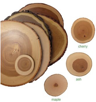 Fallen Tree Cutting BoardsCutting Boards, Bluebirds Hills, Trees Trunks, Trees Cut Boards, Kitchens Stuff, Kitchens Accessories, Servings Trays, House Stuff, Favorite Kitchens