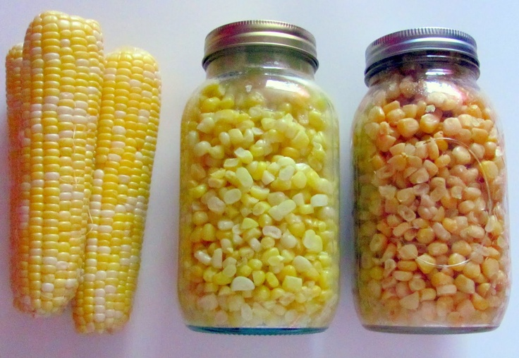 """Pressure Canning Corn  Dr. Lazy Palate is officially calling us, """"busy beavers"""" because we have been doing so much gardening and canning this year. Somewhere in between we are taking the kids swimming almost every day, and I am working on building up a stash of freezer meals and preparing homeschooling stuff for the year. Dr. Lazy Palate wants 100 quarts of corn pressure canned this year. No, I did not tack on an extra zero; he wants 100 quarts of corn. Never mind the fact that I tried to…"""