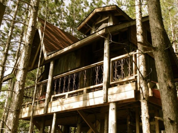 Tree Houses Are Something That Everyone Loves Whether You