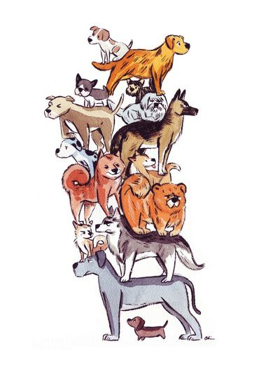 Idea for a kids book. A child wants to own all the dog breeds and is running out of room to house them.
