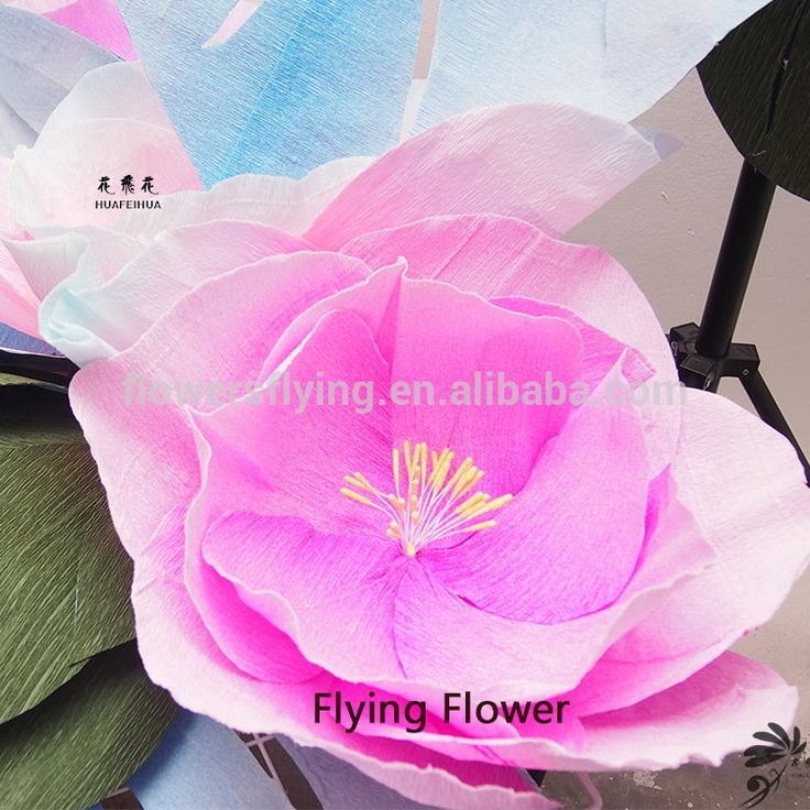 Latest Fashion High Reflective Decor Artificial Flowers , Find Complete Details about Latest Fashion High Reflective Decor Artificial Flowers,Decor Artificial Flowers,Latest Fashion Decor Artificial Flowers,High Reflective Decor Artificial Flowers from -Shanghai Fei Hua Industrial Co., Ltd. Supplier or Manufacturer on Alibaba.com