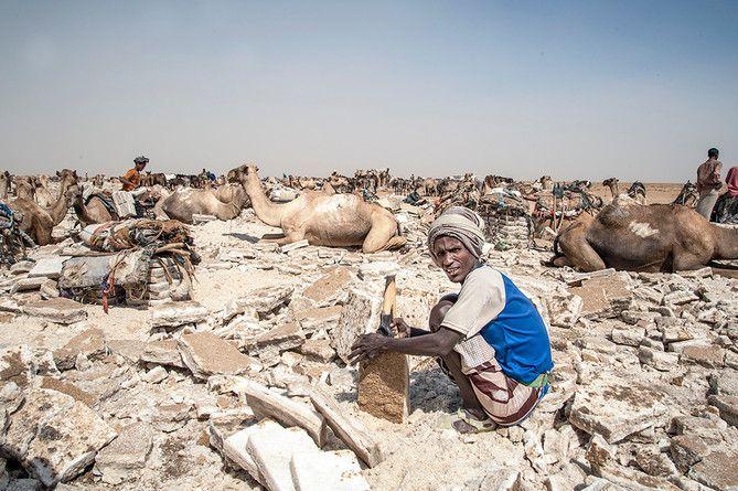 Raccoglitori di sale (Etiopia 2013)