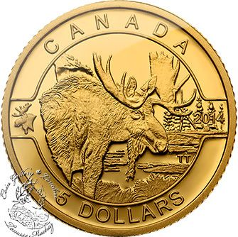 Coin Gallery London Store - Canada: 2014 $5 The Moose Pure Gold Coin, $279.95