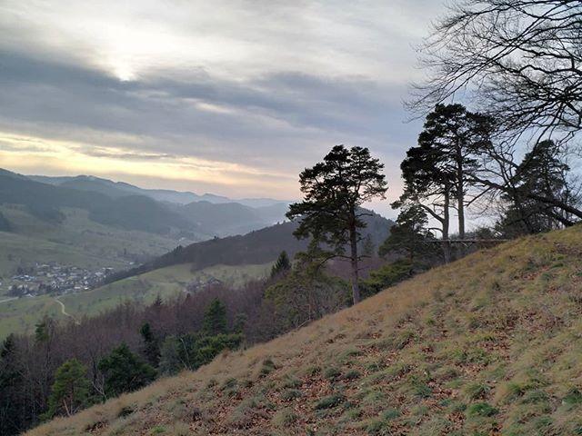 #Naturmomente #Schwarzbubenland #Solothurn #Nunningen #Schweiz  #photooftheday #magicplaces #kraftorte #switzerland #switzerlandpictures #magicswitzerland  #nature #naturelovers #forest winter #sky #mountains  #clouds #cloudporn #cloudstagram #instaclouds #cloudysky