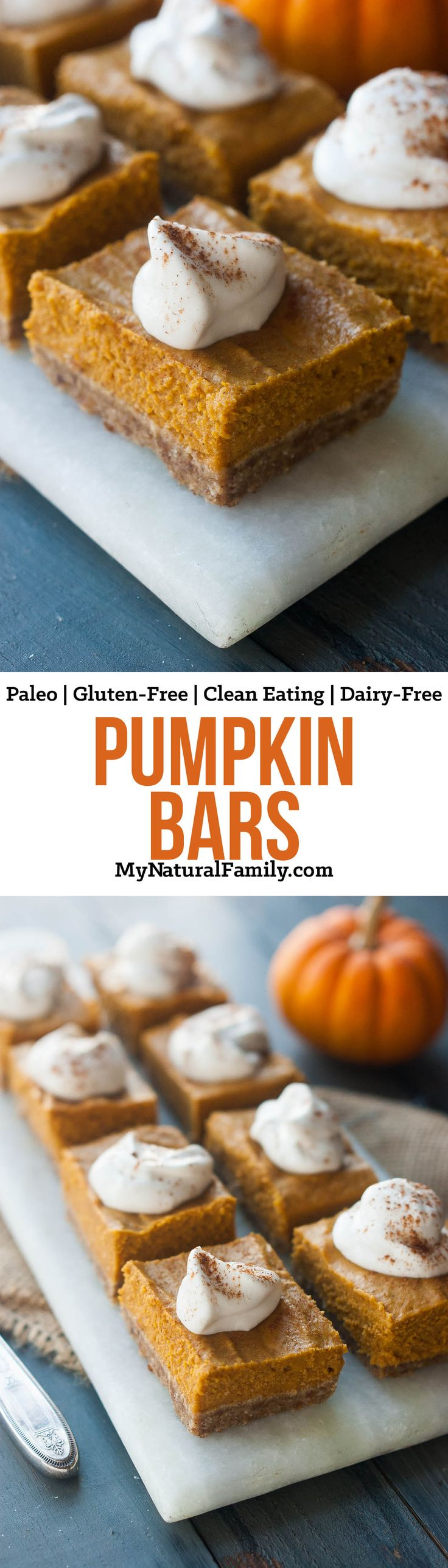 Pumpkin Bars Recipe {Paleo, Gluten-Free, Clean Eating, Dairy-Free} - I'm sick of not eating what everyone else is having, so I'm going to make these and share with everyone.