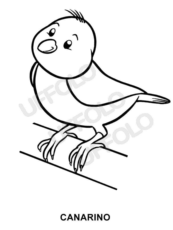 Disegni immagini da stampare e colorare uccelli e - Semplici disegni di uccelli ...