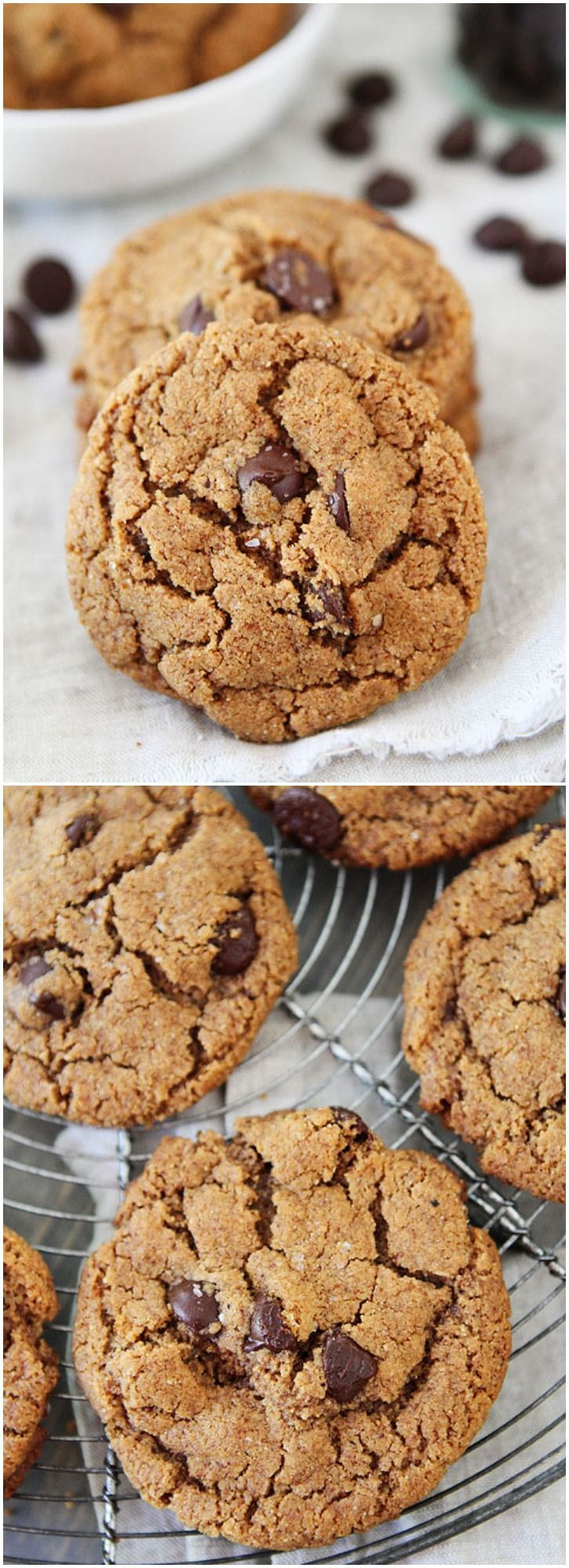 Flourless Almond Butter Chocolate Chip Cookies on twopeasandtheirpod.com Love these gluten-free cookies! So easy to make too!