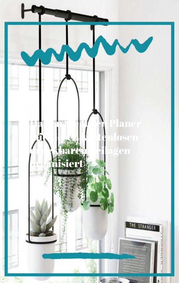 Eine Vollstandige Anleitung Zur Beleuchtung Ihrer Zimmerpflanzen Quiz Vintage Revivals Low Light Bright Indirect F In 2020 Plants Artificial Plants Peacock Plant