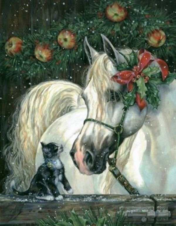 Equestrian Art Horse Christmas Cards