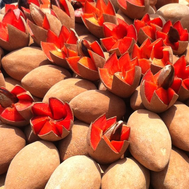 Mamey, an exotic fruit native to Central America, is delicious in smoothies and puddings. It's very sweet!