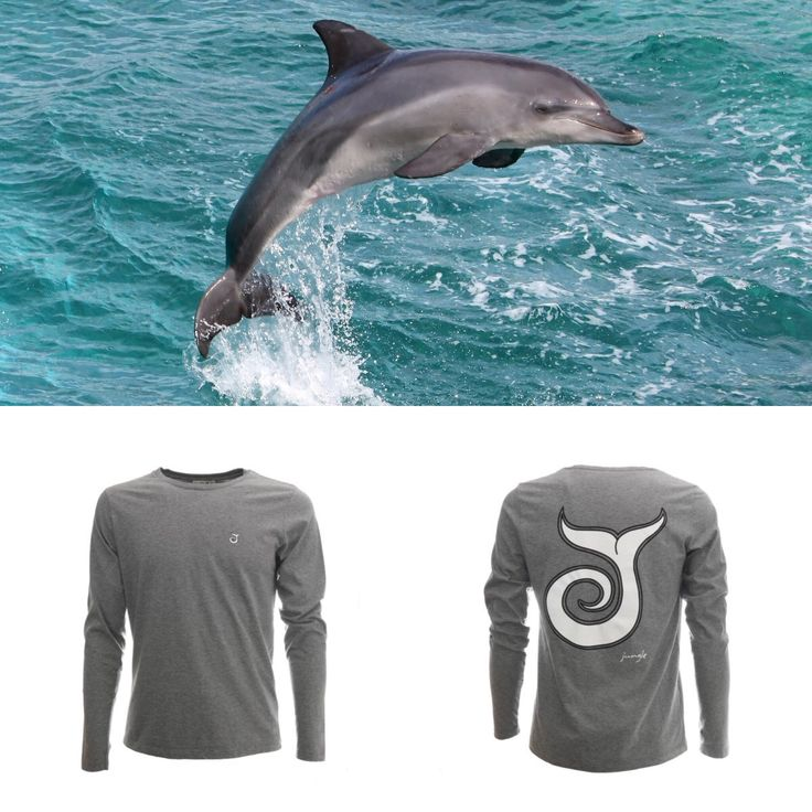 T-SHIRT A MANICHE LUNGHE Jack grigio JUNGLE SURF 50,00€ In cotone jersey 301 Made in Italy 100% cotton