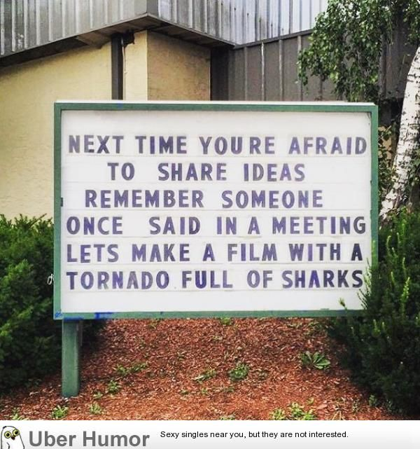 Don't be afraid to share your ideas. | Funny Pictures, Quotes, Pics, Photos, Images. Videos of Really Very Cute animals.