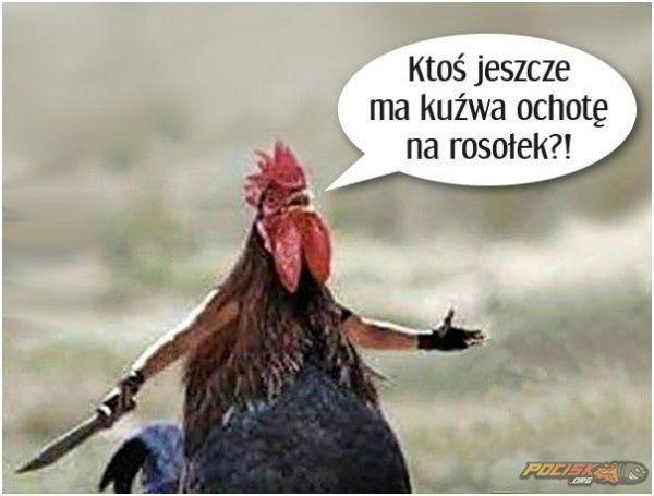 Rosołek ;) www.pocisk.org