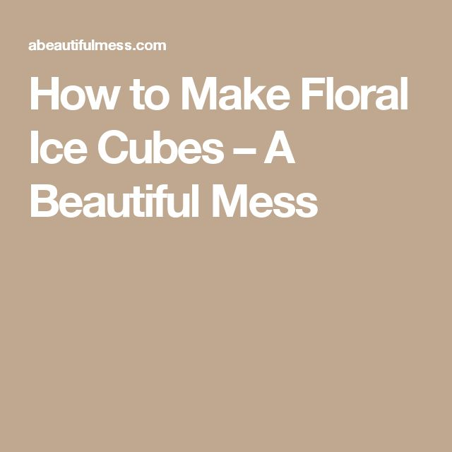 How to Make Floral Ice Cubes – A Beautiful Mess