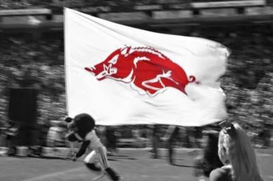 Razorbacks! ~ check out ~ RollTideWarEagle.com ~ great sports stories, audio podcast and FREE on line tutorial of college football rules. #CollegeFootball #Arkansas #Razorbacks