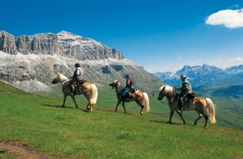 #Equitazione in #Trentino! Per #ammirare meglio lo #splendido #paesaggio!