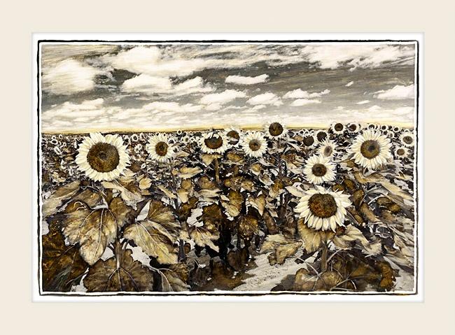 Field of Sunflowers - Marlene Neumann