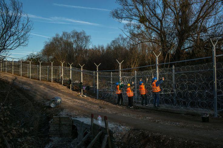 Vigilantes Patrol Parts of Europe Where Few Migrants Set Foot - The New York Times