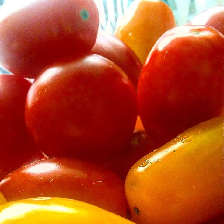 Anielska dieta czyli łakocie wg Serafina  #pomidor #tomato #sun #summer