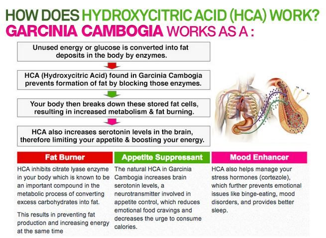 Garcinia cambogia with 60% available here. Visit our website and get your garcinia cambogia hca free trial offer.