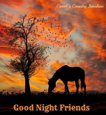 Good Night Friends Sweet Dreams God Bless Everyone Good