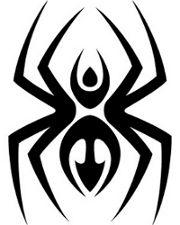 Spider Tattoo 3