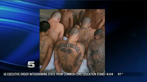 "Official: Gang Members Among Immigrants Surrendering to Border Patrol | KRGV.com | CHANNEL 5 NEWS | Breaking News Breaking Stories ""You ask them their name and where they're from, they say that there is violence in my home country and they'll kill me if you return me,"" said Cabrera. ""I do believe there is violence in their home country, but I also believe that a lot of them have been coached."""