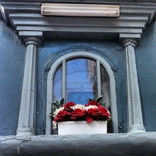 Always look up» #up #lookup #window #flowers #apartment #torrox