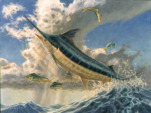 the old man and the sea marlin flying fish marlin print blue marlin sail fish pinterest. Black Bedroom Furniture Sets. Home Design Ideas