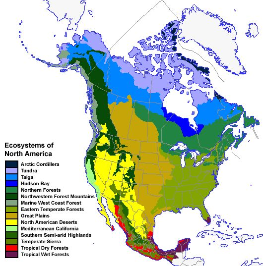This picture is the ecosystems in North America Ecosystems