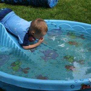Best 25 Plastic Swimming Pool Ideas On Pinterest