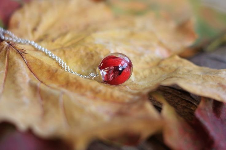 Petite #Fuchsia necklace with #eco friendly #resin & sterling silver chain, made in #Ireland, #irish #wildflower, tiny, eco resin, red, 925 silver by GoldenForestBoutique on Etsy https://www.etsy.com/ie/listing/564875075/petite-fuchsia-necklace-with-eco