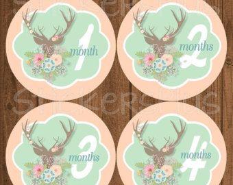 VENTE bébé mois autocollants Stickers bébé fille par StickersPlus