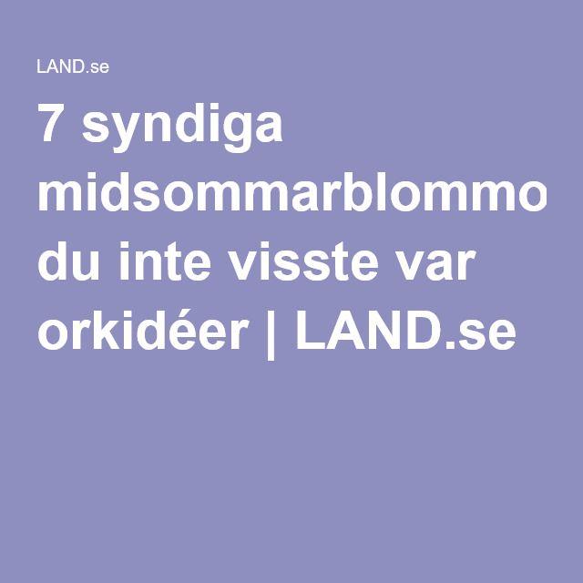 7 syndiga midsommarblommor du inte visste var orkidéer | LAND.se