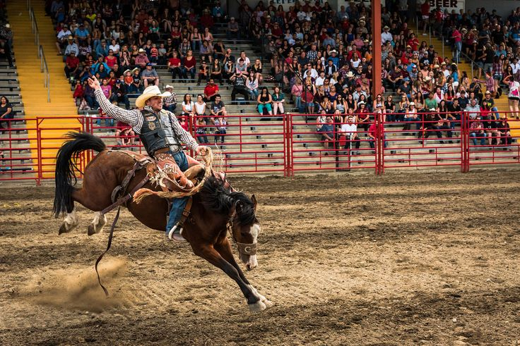 Amy Mitchell  to  Penticton Photography Club Yesterday at 12:27pm ·  Hi there, thought I would introduce myself :) I'm moving to Penticton in two weeks and looking forward to exploring the Okanagan with my camera and meeting new people. I'm currently editing my photos from the 90th Williams Lake Stampede, after getting a press pass through the local camera club. Here's my gallery so far, clicking on the photo will take you there