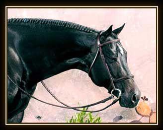 AQHA stallion Fabuluke