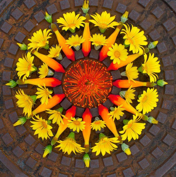 Artista cria lindas mandalas com flores - Casa