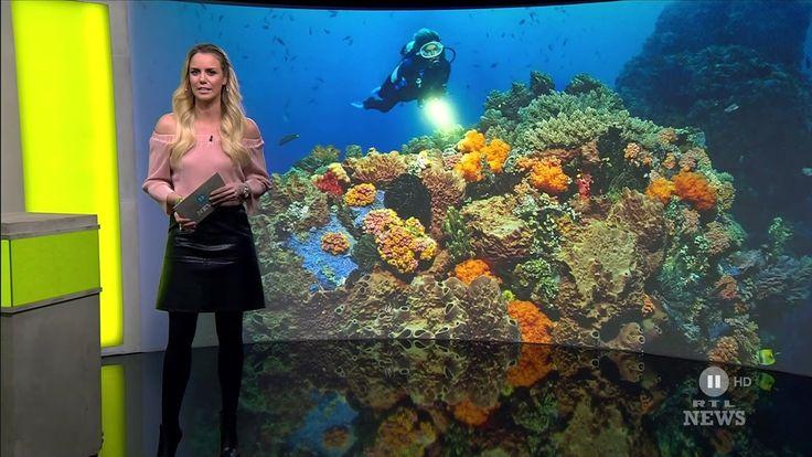 Sandra Kuhn - Schneiders German Presenter Leather Skirt  12 2016